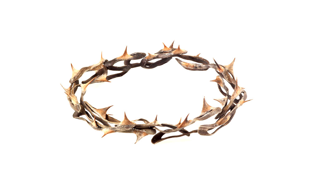 Anastasia Young. Bracelet: Crown of Thorns II, 2017. Nickel wire, thorns, wax.. 10 x 8.5 x 2 cm. Photo by: Anastasia Young. From series: The Lily Holds Firm.